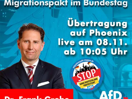 AfD erzwingt Debatte über Migrationspakt im Bundestag