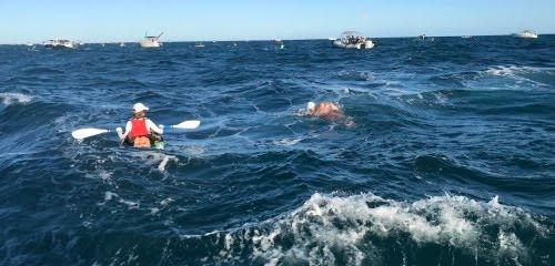 Rottnest Channel Swim rough conditions