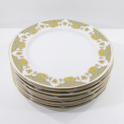 4PC Dinner Plate Set