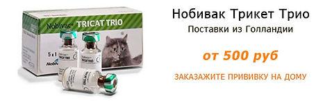 Вакцина для кошек Нобивак Трикет Трио