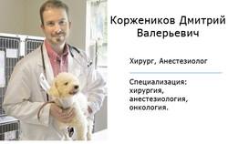 врач Коржеников