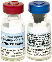 Вакцина Мультикан-4. Вакцинация собак на дому.