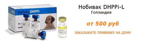 Вакцина для собак Нобивак DHPPi-L