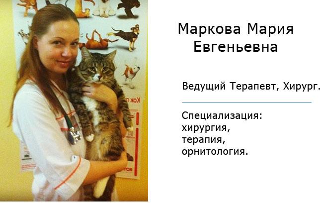 Врач Маркова