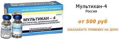 Вакцина для собак Мультикан-4