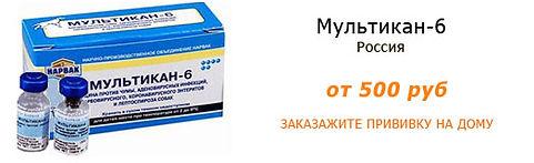 Вакцина для собак Мультикан-6