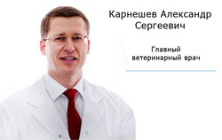врач главврач