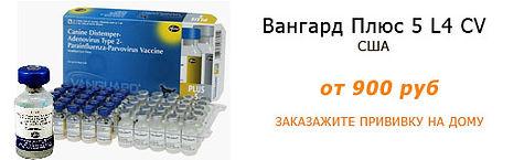 Вакцина для собак Вангард Плюс 5 L4 CV