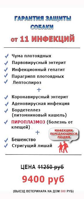 Защита собаки от 11 инфекций