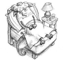 Вызов ветврача на дом к больному животному в течение 1-1,5 часов