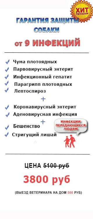Защита собаки от 9 инфекций