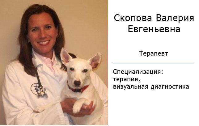 врач Скопова