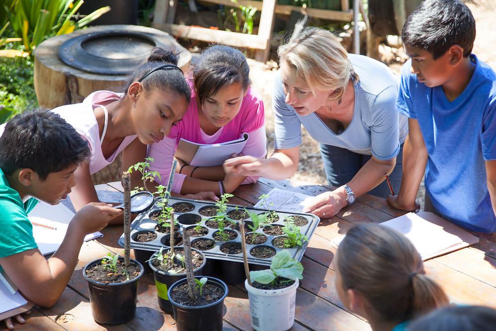 תלמידים לומדים ביחד מחוץ לכיתה
