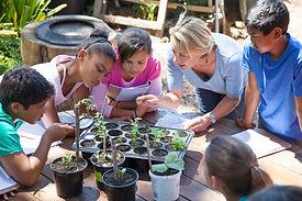 Gardening Lesson