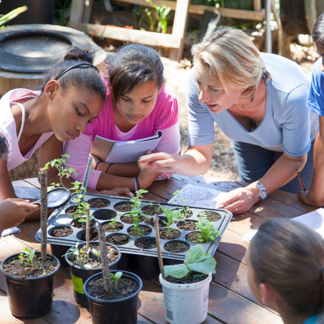 Growing Little Gardeners to Encourage Healthy Eating