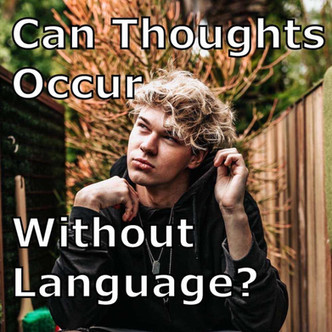 Il calo del Quoziente Intellettivo, l'impoverimento del Linguaggio e la rovina del Pensiero