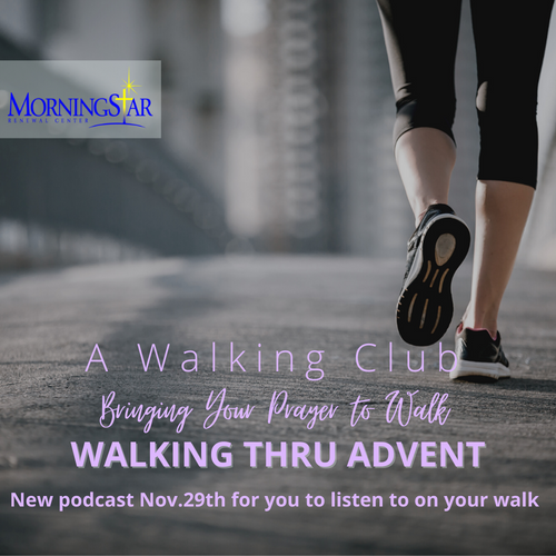 Walking Thru Advent