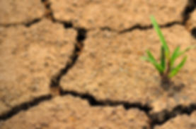 adra-provides-for-drought-relief-in-aust