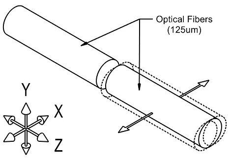 Figure #1-b.jpg