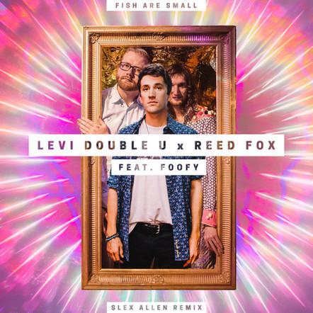 Levi Double U & Reed Fox - Fish Are Small (Slex Allen Remix)