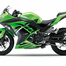 The BS6 Kawasaki Ninja 300, with New Shades, to be Launched Soon