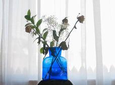 Blue vase 2017.jpg