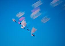bluangels.jpg