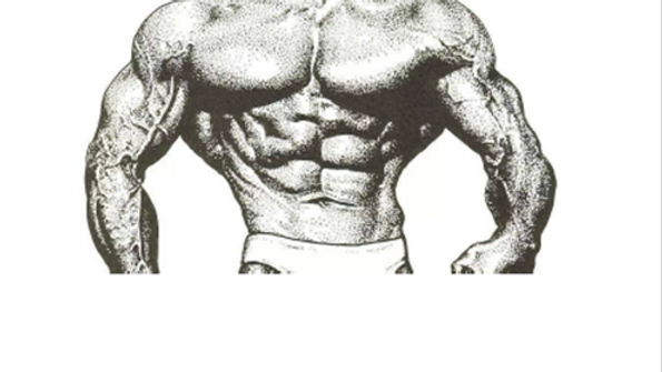 Vince Gironda's Diets and Nutritional Principles ebook