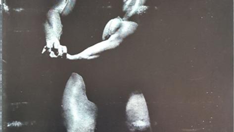 Arms That Stun by Larry Scott