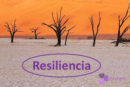 ¿Conoces la importancia de ser resiliente?