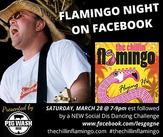 FLAMINGO NIGHT IN CANADA  (2).png