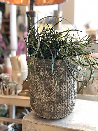 Blumentopf  Eimer