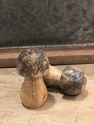 Pilz Holz