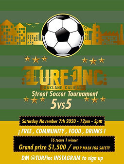 TURFinc soccer tournament 5 v 5