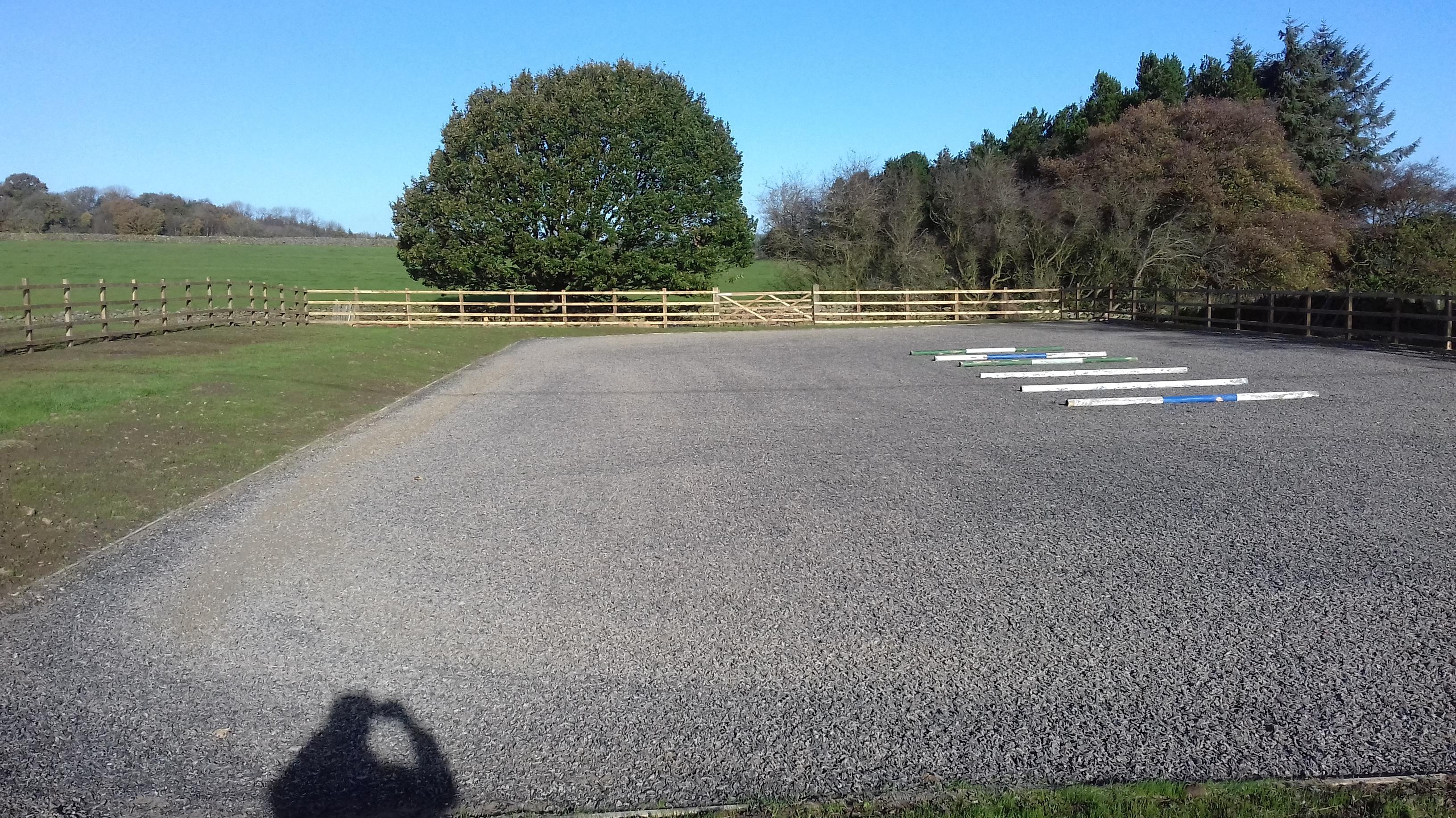 Arena construction, Harrogate