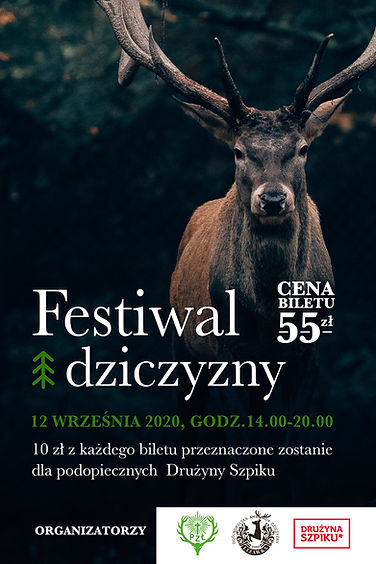 festiwal.jpg