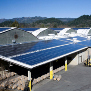 BERINGER VINEYARDS_SAINT HELENA,CA _ 1,341 kW DC