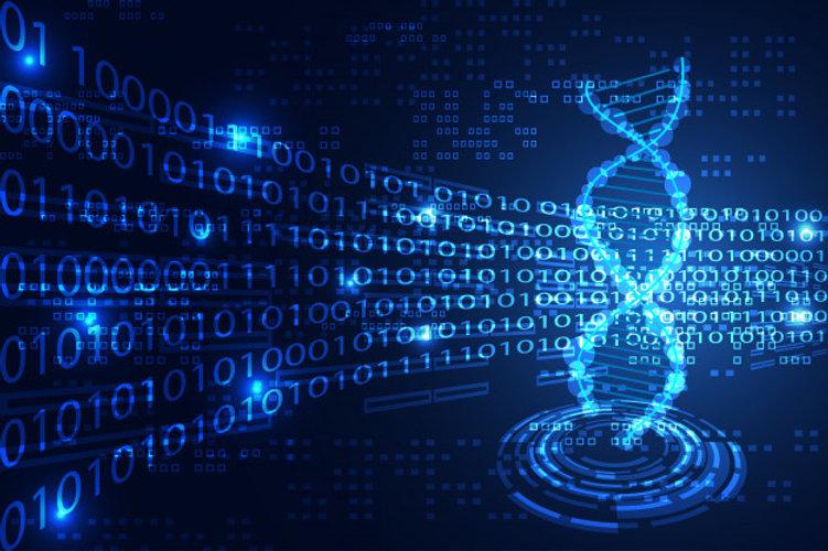 Organic tech llc binary options