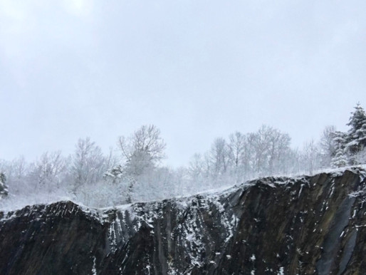 Evolving (aka Coping with Snowstorms in May)- written 2020