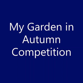 Autumn in my Garden Jewellery Competition