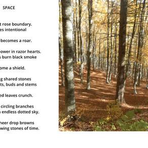 Jane's Journals - Poem called Space