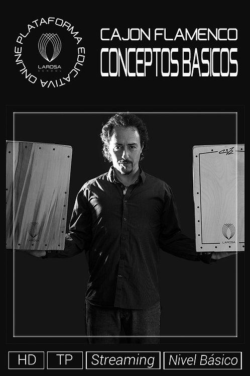 DVD 1.- Curso de cajón. Conceptos Básicos