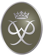 Silver Award Badge 2008.jpg