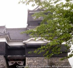 Kumamoto Castle #6