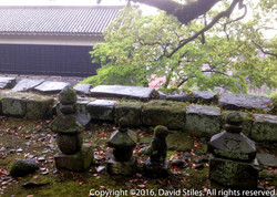 Kumamoto Castle #4