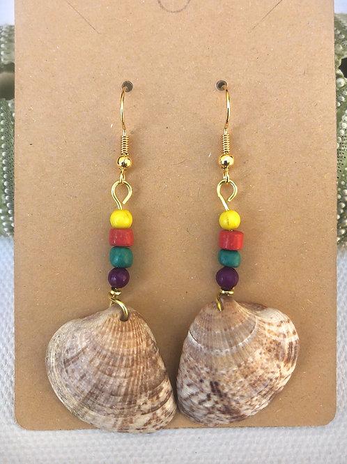 Multi-Color Caribbean Shell Earrings