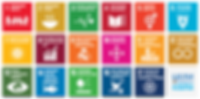 Sustainable_Development_Goals_ru.png