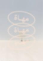 LOGO | SCREEN COLOR-04.png