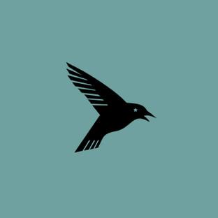 Raven Star Healing