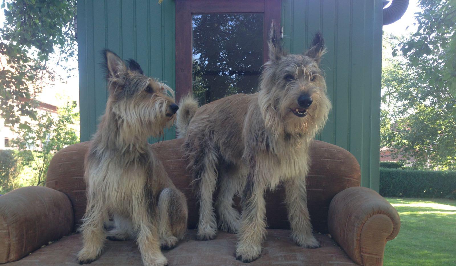Smilla (links) zu Besuch bei ihrem Bruder